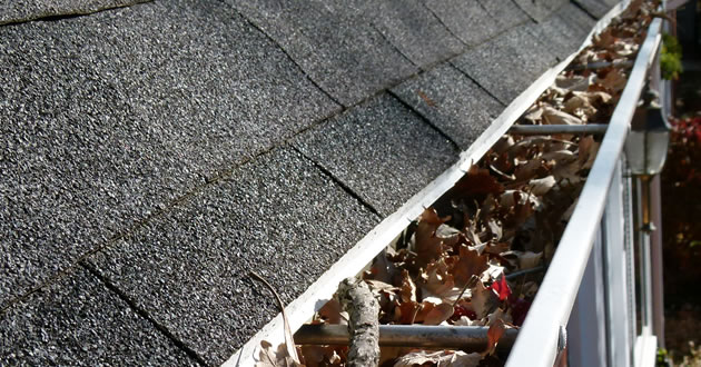 Gutter Cleaning Services in Upstate New York